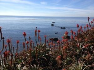 California February