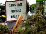 Xmas Tree Recycle