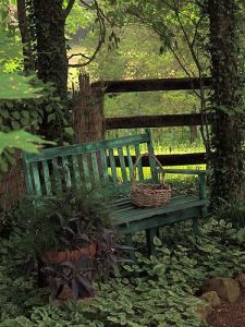 1 Outdoor reading area