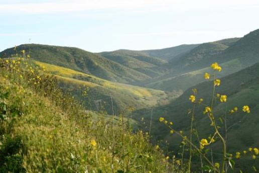 great-vistas