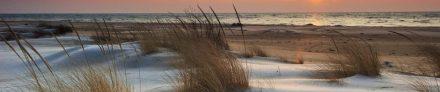 cropped-beach-header.jpg