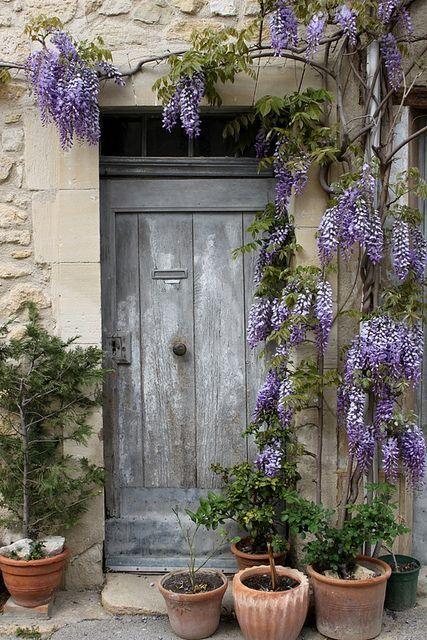 Wisteria Door